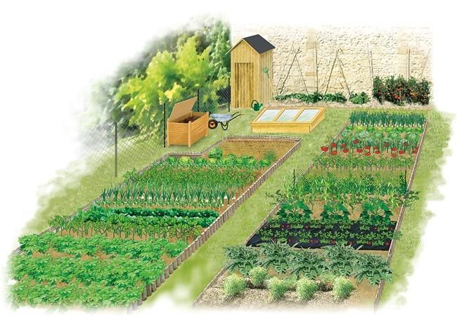 Comment faire un potager egalite et r conciliation for Amenager jardin rectangulaire