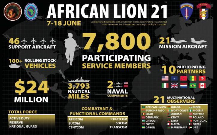 Le Lion Africain en chasse de nouvelles proies
