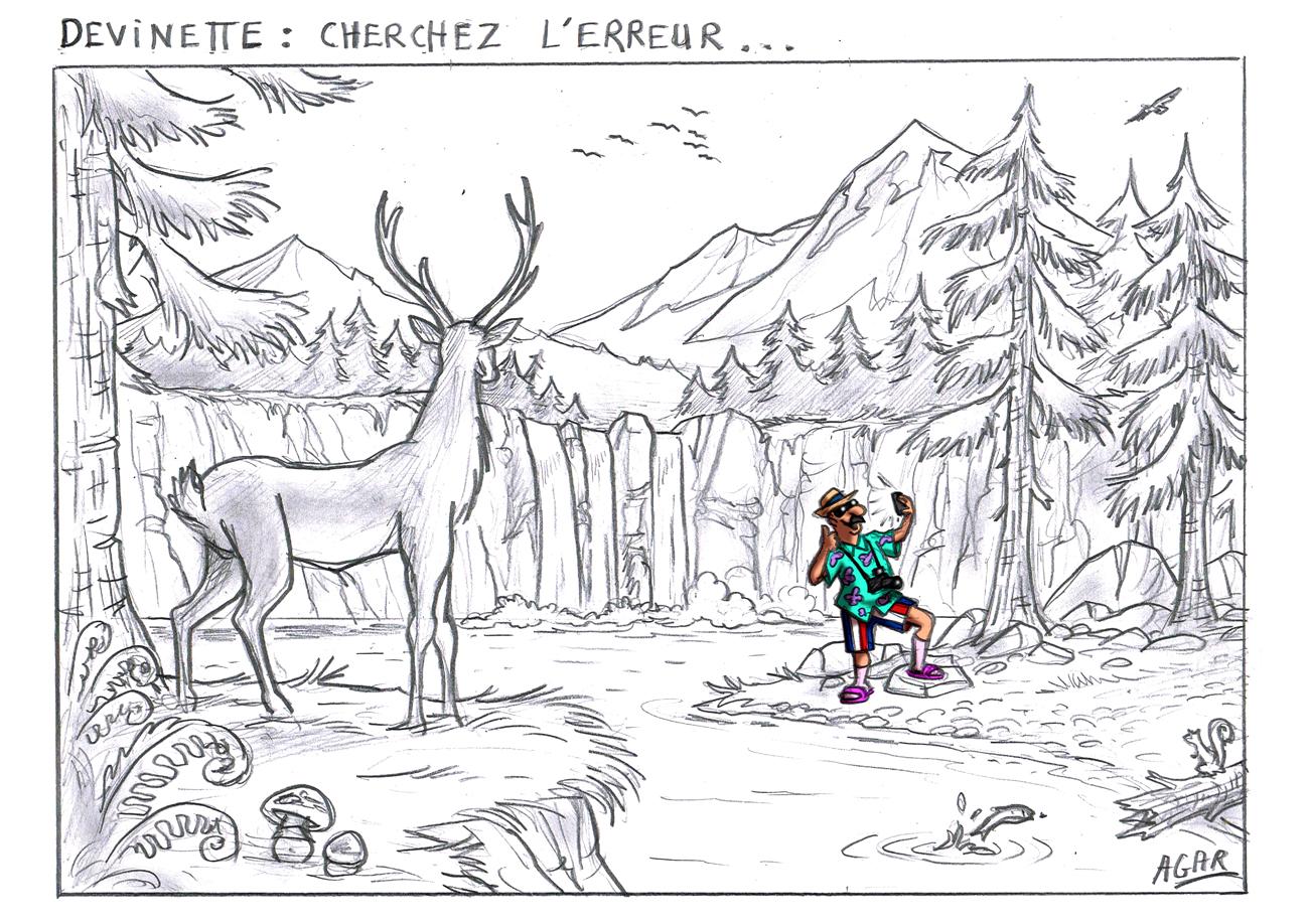 Les dessins de la semaine egalite et r conciliation - Dessin de nature ...