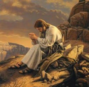 BEAUTÉS DE L'ÉGLISE CATHOLIQUE: SON CULTE, SES MOEURS ET SES USAGES; SUR LES FÊTES CHRÉTIENNES - Allemagne - 1857 Arton37990-94376